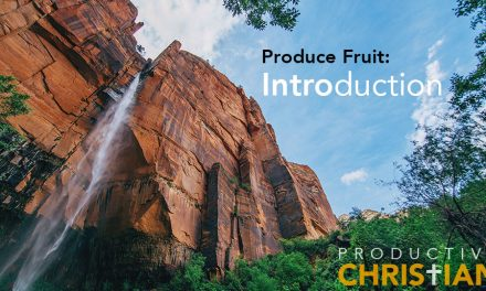 Produce Fruit: Introduction