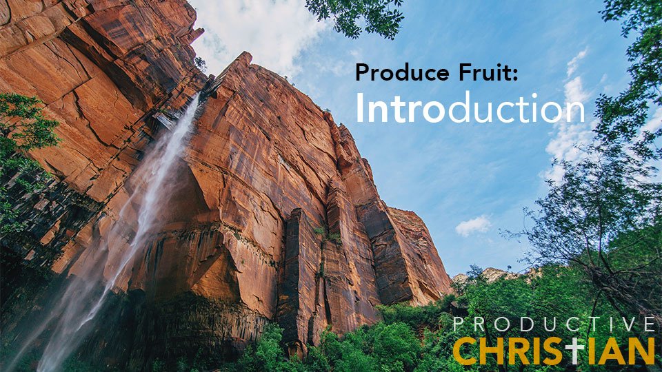 Produce Fruit Introduction
